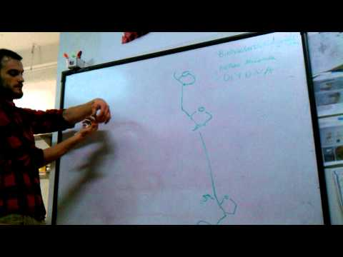 Intro To DNA, DNA Synthesis, And Microfluidics (Nathan McCorkle)