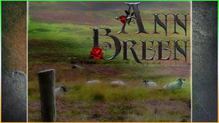 Ann Breen ~ The Fields Of Athenry ~ Take 2