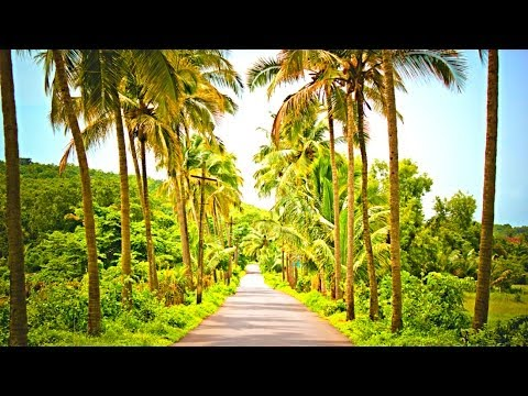 Driving Through Rural India - 2014 HD