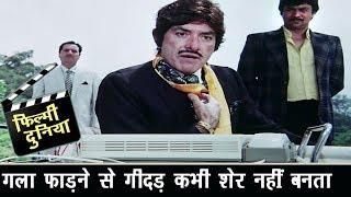बोटियां नोचने वाला गीदड़ गला फाड़ने से शेर नहीं बन जाता - Raaj Kumar - Best Dialogue