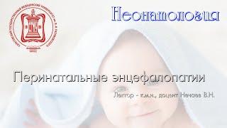 Лекция 4 - Перинатальные энцефалопатии