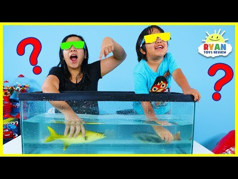 What's in the Box Challenge Underwater Version!!!