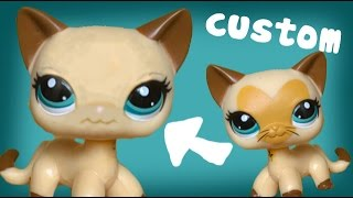 Removing Paint for Custom LPS Short haired Cat| AliceLPS
