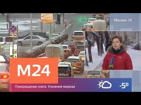 Синоптики рассказали, какая погода ждет москвичей в ближайшие дни - Москва 24