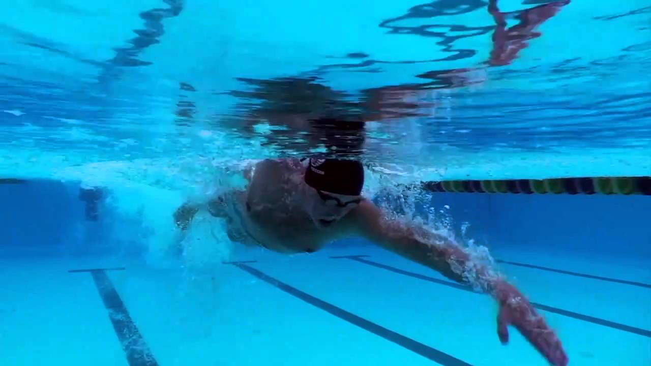 Olympic Swimming Freestyle