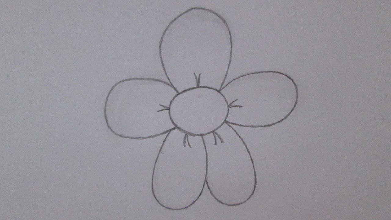 Como Desenhar Uma Flor Margarida Youtube