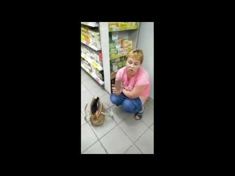 Насрала и покурила в магазине Магнит. Астрахань.