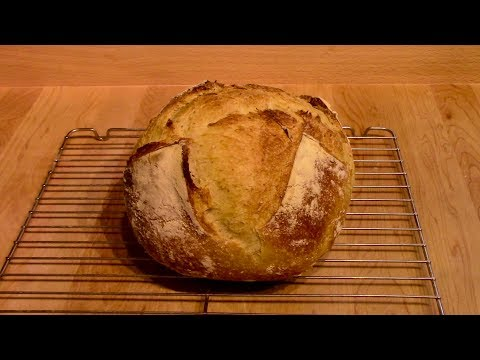 Developing a Sour Dough and baking with it Part One