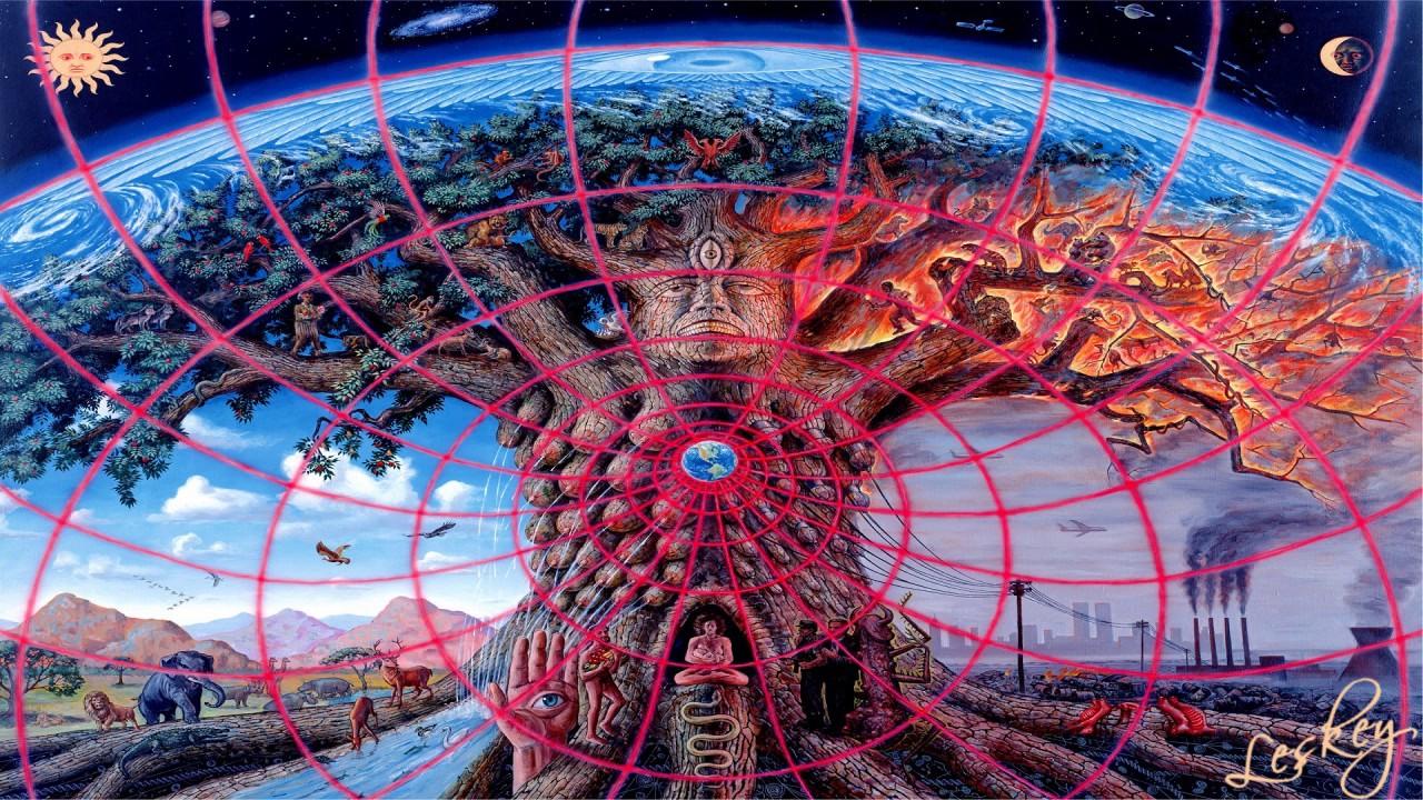 хромосомах фото дерево жизни вселенная чистим