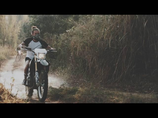 Martin Garrix + Third Party - Lions In The Wild