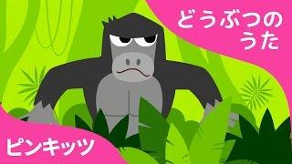 ジャングルブンブン | Jungle Boogie | どうぶつのうた | ピンキッツ童謡