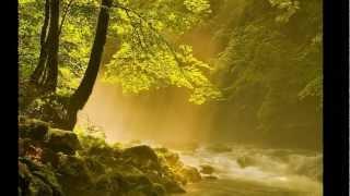 Ave Maria ~Franz Schubert~