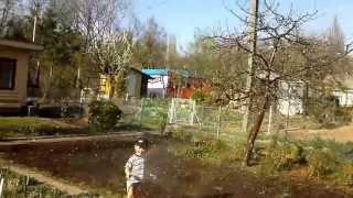 Tymon ogrodnik