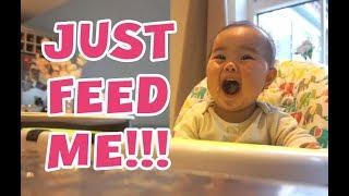 Video JUST FEED ME!!! download MP3, 3GP, MP4, WEBM, AVI, FLV September 2018
