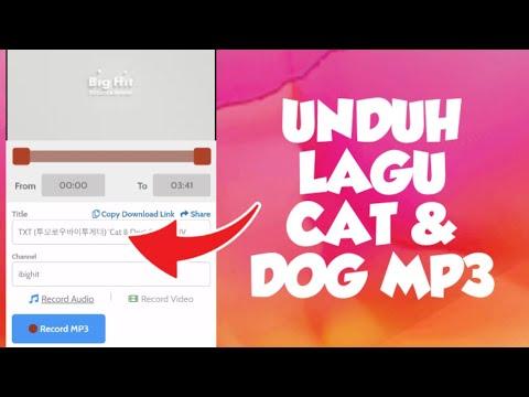 download-lagu-cat-and-dog-txt-|-cat-and-dog-lirik-sub-indo