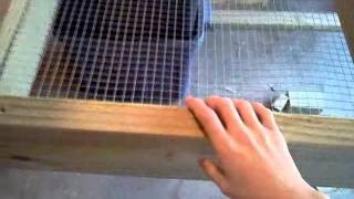 Building Rabbit Hutch Part 2 New Plans