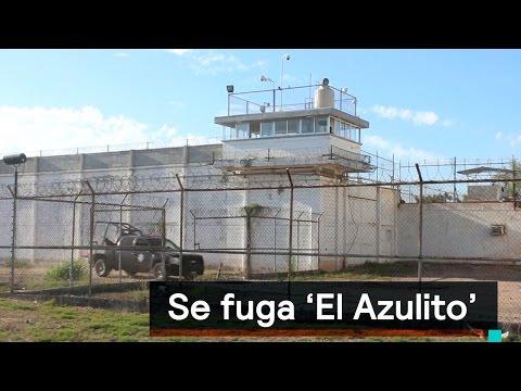 Se fuga 'El Azulito' del penal de Aguaruto, en Sinaloa - Despierta con Loret