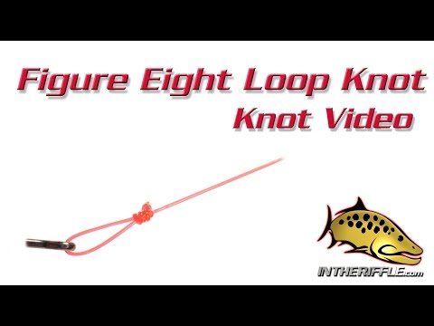Figure Eight Loop Knot Tying Video - Fly Fishing Knots