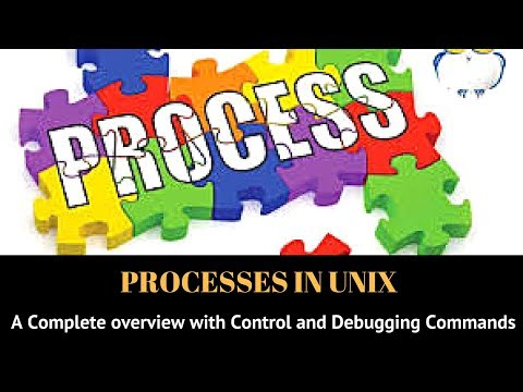 Processes in Unix: Process Control and Debugging Commands
