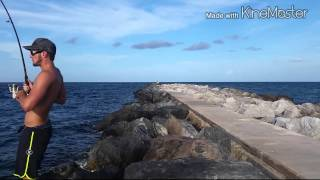 snook fishing palm beach
