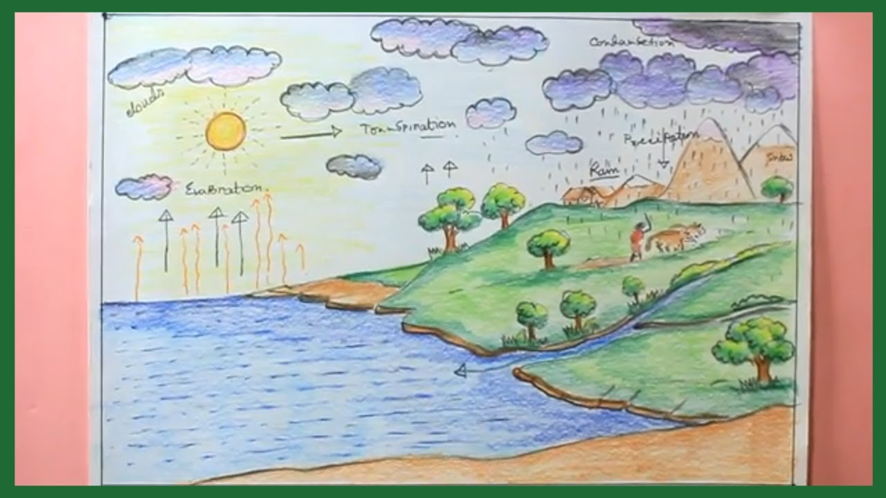 How to draw water cycle with color pencil step by step draw water cycle for school project