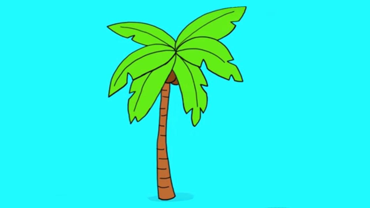 Apprendre A Dessiner Un Palmier Youtube