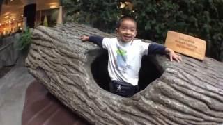Seattle Children's Museum (bonus footage)