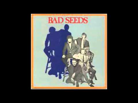 The Bad Seeds (band)-