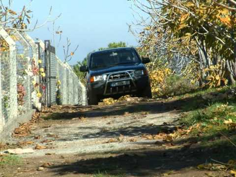 Organic Fig & Olive Farm in Kusadsi,TURKEY
