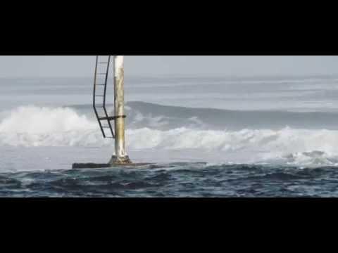 Surf the Basin | 2014