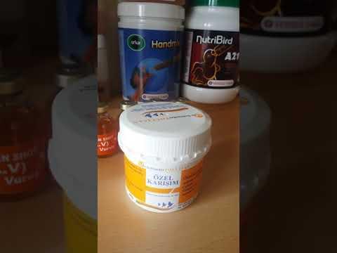 Özel Karışım Tollisan Adeno -Coli -Mix Ronidazol Metronidazol Amoxicilin