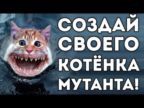 СОЗДАЙ СВОЕГО КОТЁНКА МУТАНТА!