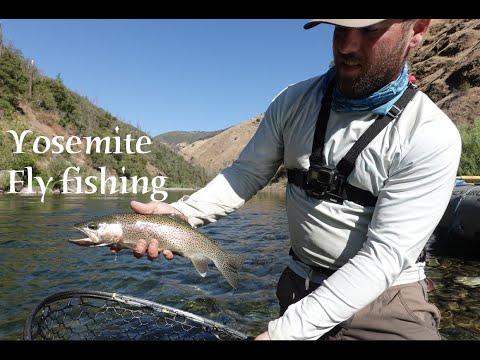 Yosemite - Tuolumne River Fly Fishing - 2019