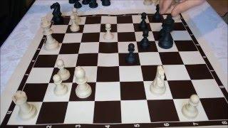 Eğitici Satranç Maçı - osman çakır