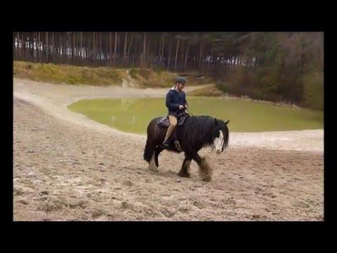 Ride&Bike Ostern 2016 Reiterhof Rohe