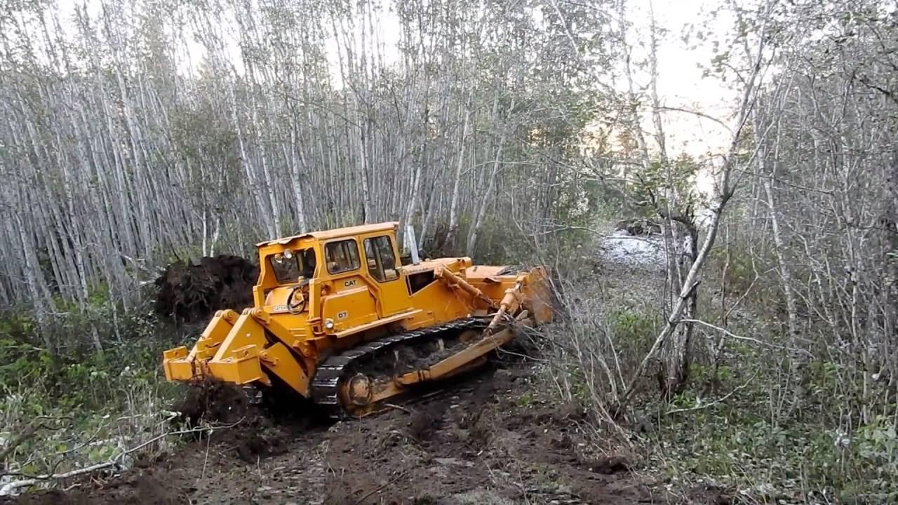 bulldozer making logging roads youtube