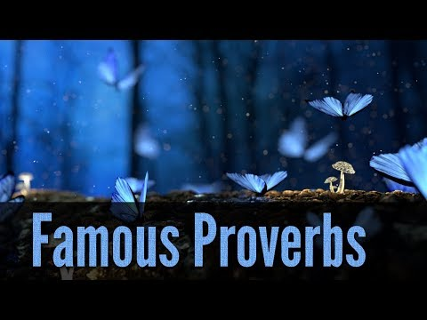 Famous Proverbs in English  - YouTube