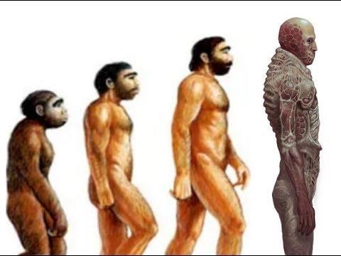 Scorn Theory: The Evolution of Scorn Guy
