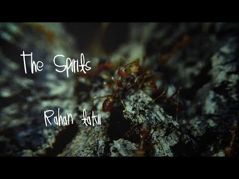 The Spirits - Rahan takii (Official Stock Footage Music Video)