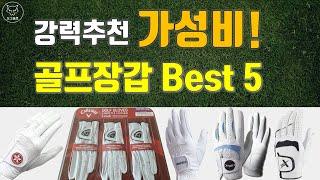 [도그골프] 강력추천 가성비 골프장갑 추천 Best 5…