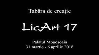 LicArt 17 - Tabara de Creatie