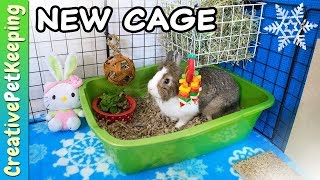 How to build a CHEAP DIY Rabbit Cage   Winter Theme