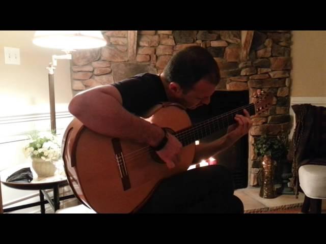 (BARRIOS) - EL ULTIMA CANCION - Flavio Sala, Guitar