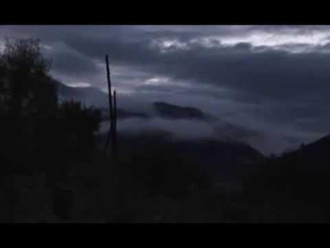 Download Nasiona AKA The Seeds 2006 documentary