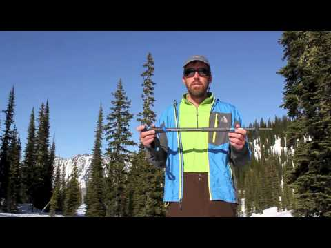 Black Diamond Expedition and Whippet Self Arrest Ski Poles