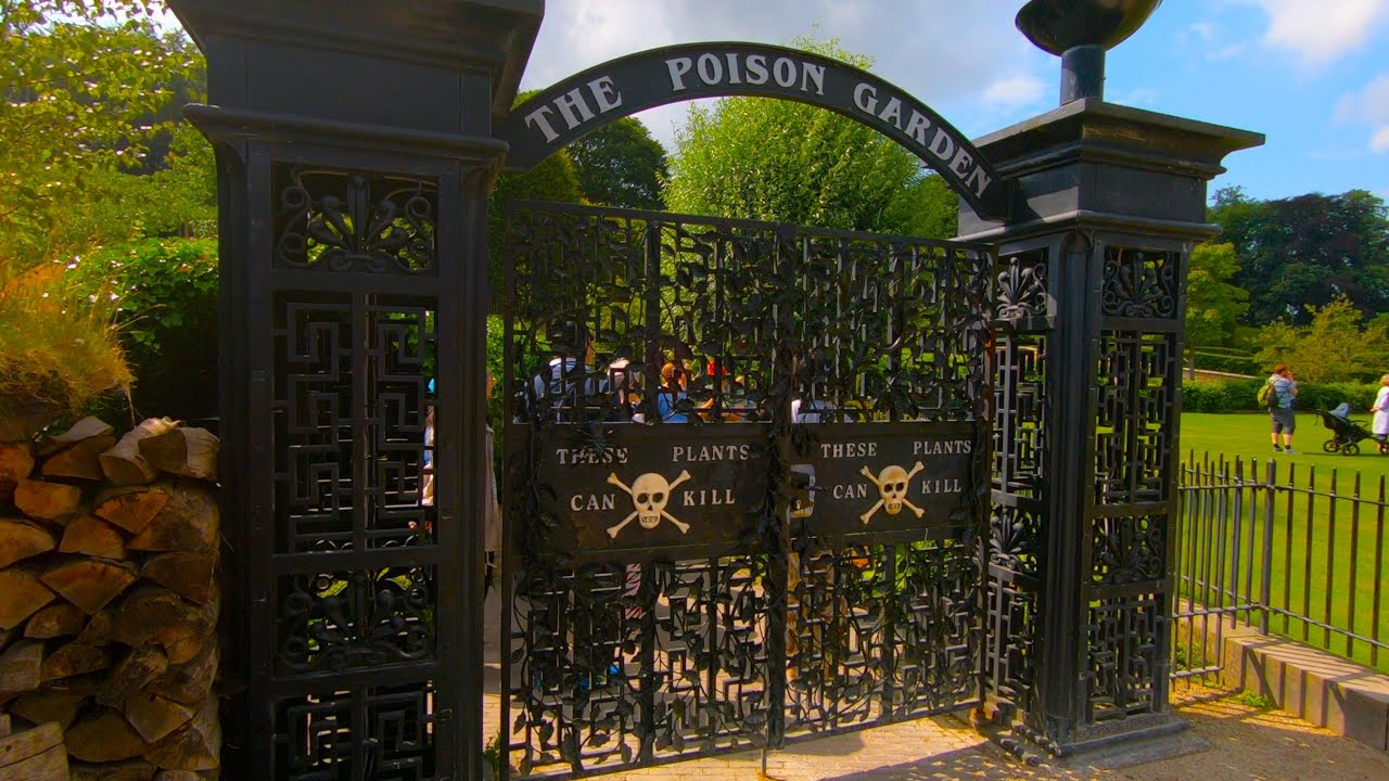 Alnwick Garden Inclusive Of The Poison Garden Alnwick Uk Gopro