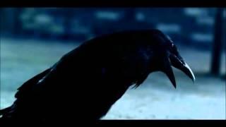 Sia vs Ellie Goulding - Love Me Alive (Kill_mR_DJ mashup)