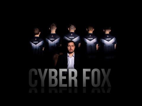 Cyber Fox | Интервью CEO | Анонс состава по Dota 2