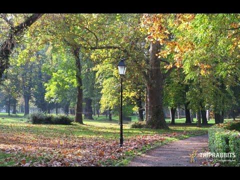 Park of King Tomislav (Osijek)