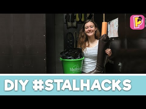 Stal lifehacks van Felinehoi! | DIY | Penny TV